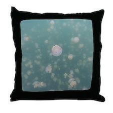 Jellyfish Lake Throw Pillow