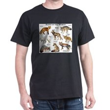 Foxes of the World T-Shirt
