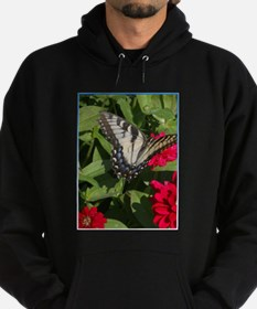 Swallowtail butterfly, photo Hoodie