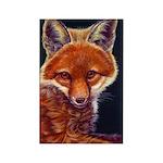 Fox Cub Rectangle Magnet (10 pack)