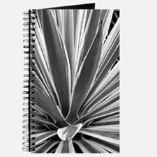 Striped cactus journal