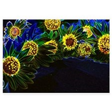Blacklight Sunflowers Invitations