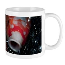 Cute Koi Mug