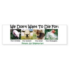 Animal Voices Bumper Bumper Sticker