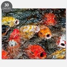 Hungry Koi Puzzle