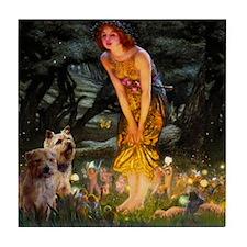 Midsummers Eve + Norwich-Norfolk Tile Coaster