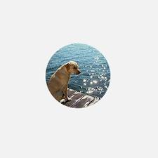 Yellow Labrador Mini Button