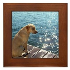 Yellow Labrador Framed Tile