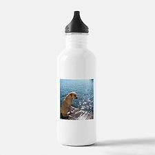 Yellow Labrador Water Bottle