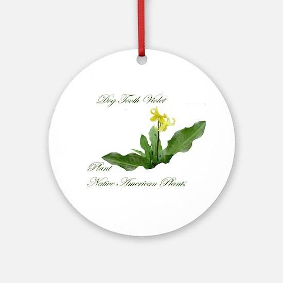 NATIVE AMERICAN PLANTS Ornament (Round)