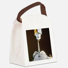 Satellite  Canvas Lunch Bag