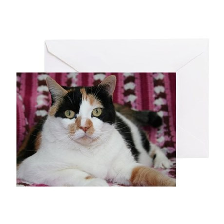 Calico Cat Greeting Cards (Pk of 10)