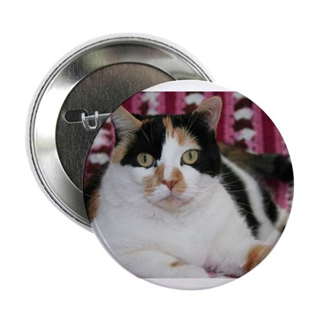 Calico Cat Button