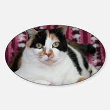 Calico Cat Oval Decal