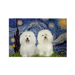 Starry Night / 2 Bolognese Rectangle Magnet (10 pa