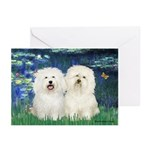 Lilies (#5) & 2 Bolognese Greeting Cards (Pk of 10