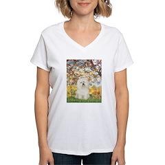 Spring / Bolgonese Shirt