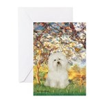 Spring / Bolgonese Greeting Cards (Pk of 10)