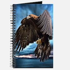 Eagle In Flight Journal