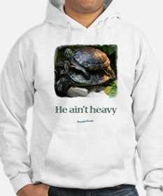 Red-eared Slider Turtles Hoodie