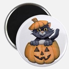 Kitty in a Pumpkin Magnets
