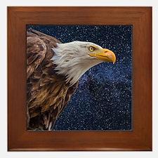 Bald Eagle Framed Tile