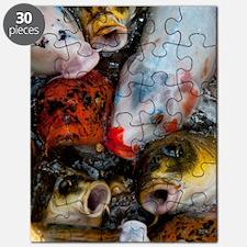 Curious Koi Puzzle