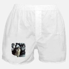 Winter Wolf Boxer Shorts