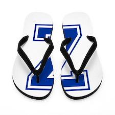 Z-var blue2 Flip Flops