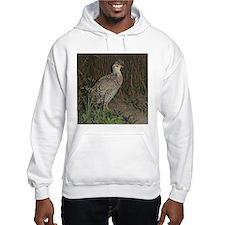 attwater prairie chicken Jumper Hoody