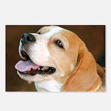 Beagle Dog Postcards (Package of 8)