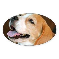 Beagle Dog Decal