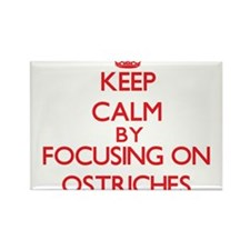 Keep Calm by focusing on Ostriches Magnets