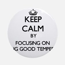 Keep Calm by focusing on Being Go Ornament (Round)