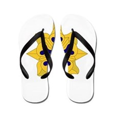 Military+Intelligence+Insignia.png Flip Flops