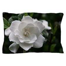 Gardenia Bloom Pillow Case