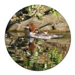 Merganser Family Round Car Magnet