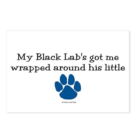 Wrapped Around His Paw (Black Lab) Postcards (Pack