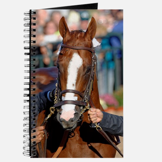 CALIFORNIA CHROME Journal