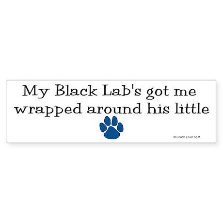 Wrapped Around His Paw (Black Lab) Sticker (Bumper