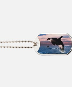 Killer Whales In The Arctic Ocean Dog Tags