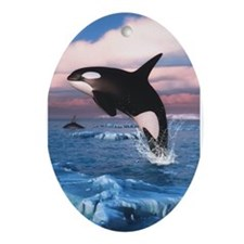 Killer Whales In The Arctic Ocean Ornament (Oval)