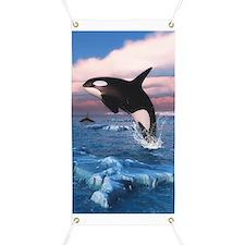 Killer Whales In The Arctic Ocean Banner