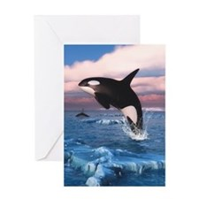 Killer Whales In The Arctic Ocean Greeting Cards