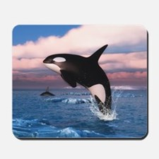Killer Whales In The Arctic Ocean Mousepad