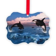 Killer Whales In The Arctic Ocean Ornament
