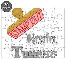 Brain Tumors Puzzle