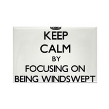 Keep Calm by focusing on Being Windswept Magnets