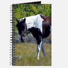 Paint Journal