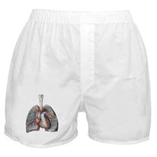 Human Anatomy Heart and Lungs Boxer Shorts